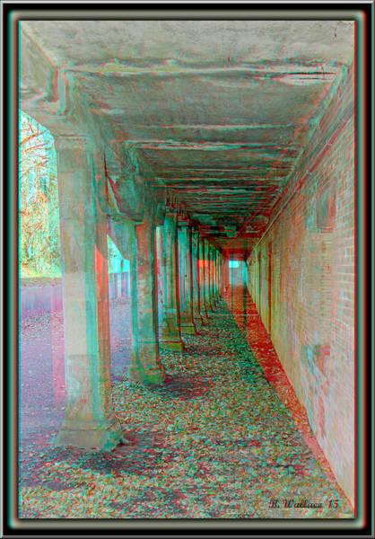 Anaglyph Photograph - Ft. Howard Pk- Tunnel Effect - Use Red-cyan 3d Glasses by Brian Wallace
