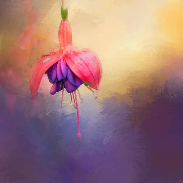 Photograph - Fuchsia Drop by Jai Johnson