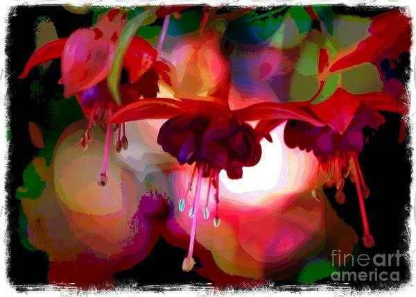 Photograph - Fuchsia World - Digital Art With Border by Carol Groenen
