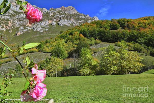 Photograph - Fuente De Los Picos De Europa 2 by Diana Raquel Sainz