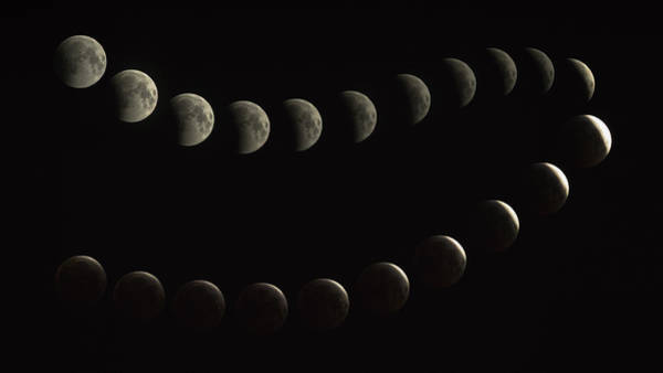 Blood Moon Wall Art - Photograph - Full Blood Moon Eclipse Sequenced by Mike  Herron