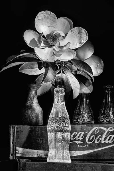Photograph - Full Bloom Still Life Black And White by JC Findley