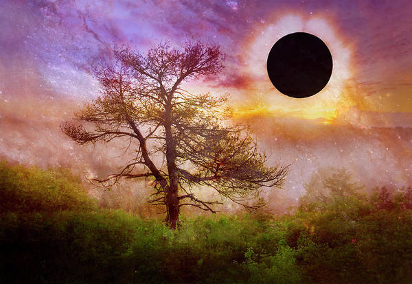 Photograph - Full Eclipse Over Misty Mountain by Debra and Dave Vanderlaan