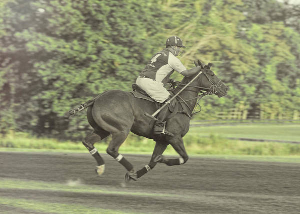 Full Gallop Pony Art Print by JAMART Photography