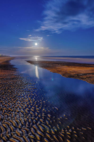 Wall Art - Photograph - Full Moon At Folly Beach - Charleston Sc  by Drew Castelhano