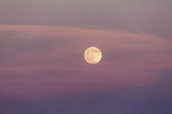 Photograph - Full Moon At Sunset by M C Hood