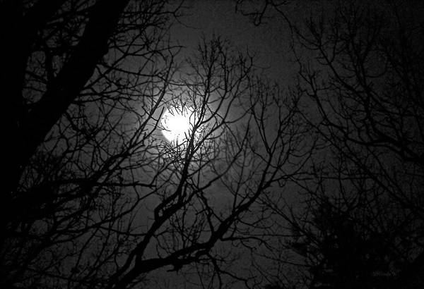 Photograph - Full Moon by Gerlinde Keating - Galleria GK Keating Associates Inc