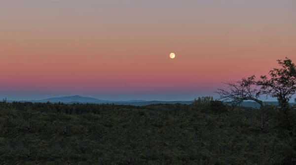 Photograph - Full Moon Horizon by Tom Singleton