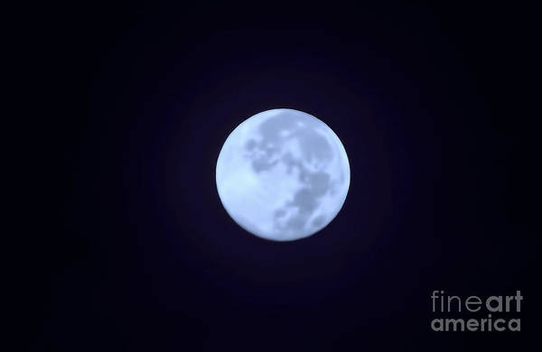 Photograph - Full Moon In Blue by D Hackett