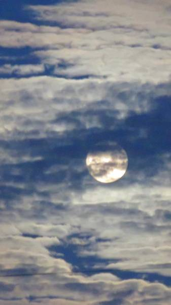Photograph - Full Moon In Gemini With Clouds by Judy Kennedy