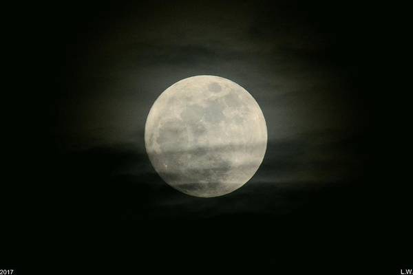 Photograph - Full Moon by Lisa Wooten