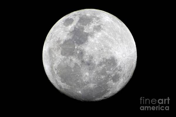 Photograph - Full Moon On January 30th 2018 by Christopher Shellhammer