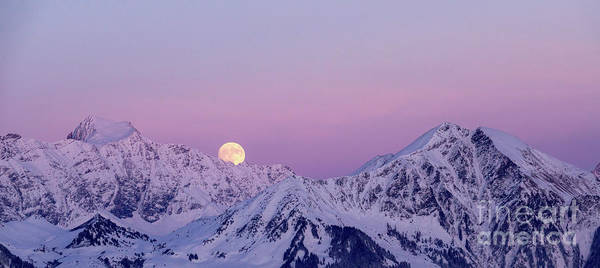 Purple Mountains Photograph - Schesaplana Dusk by DiFigiano Photography