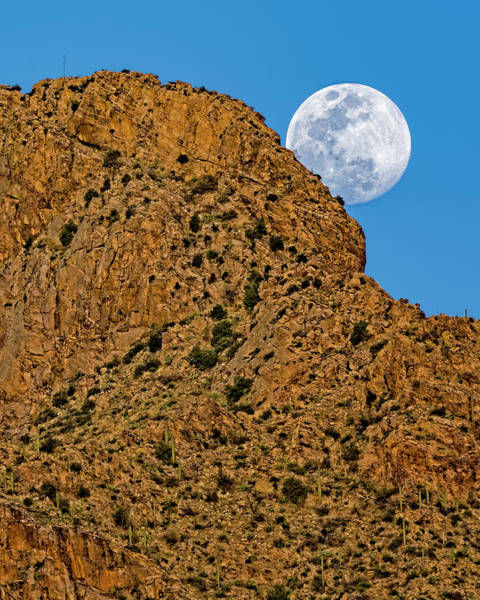 Photograph - Full Moon Pusch Ridge V1848 by Mark Myhaver