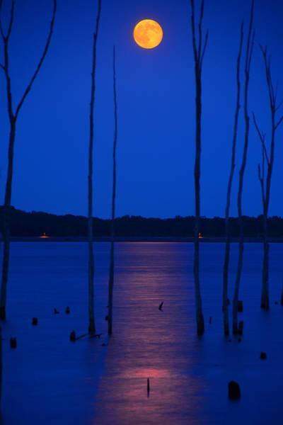 Photograph - Full Moon Rises by Raymond Salani III