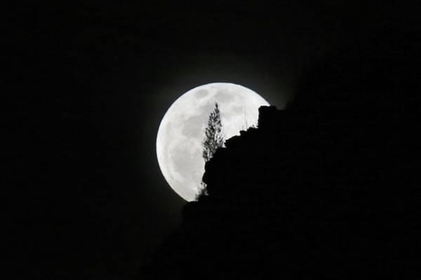 Photograph - Full Moon Rising Over Makapu'u by M C Hood