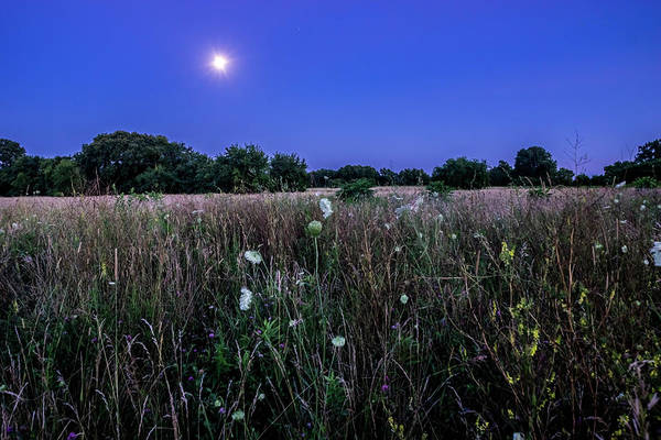 Photograph - Full Moon Rising Over The Prairie by Sven Brogren
