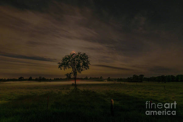 Photograph - Full Moon Rising by Roger Monahan