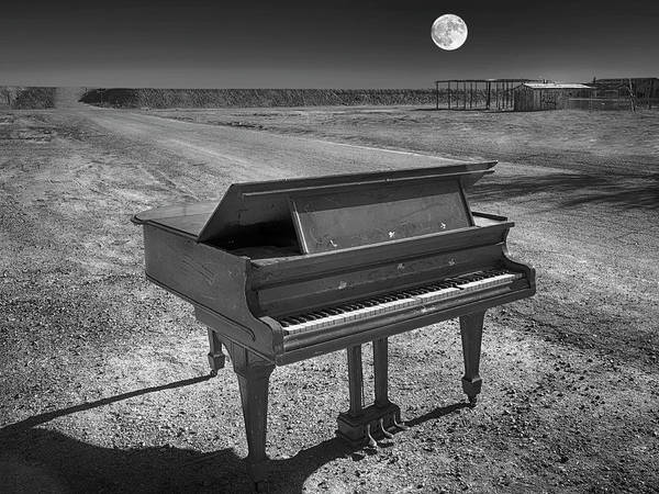 Wall Art - Photograph - Full Moon Sonata by Dominic Piperata