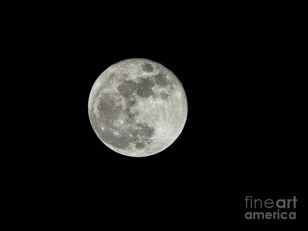 Photograph - Full Moon by Spencer Baugh