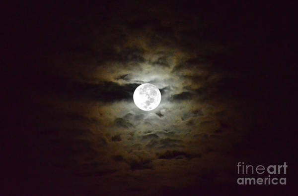 Photograph - Full Moon With Clouds Number 1 by Christopher Shellhammer