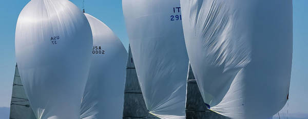 Photograph - Full Sail by Steven Lapkin