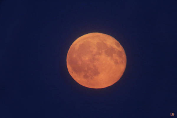 Photograph - Full Sturgeon Moon by John Meader