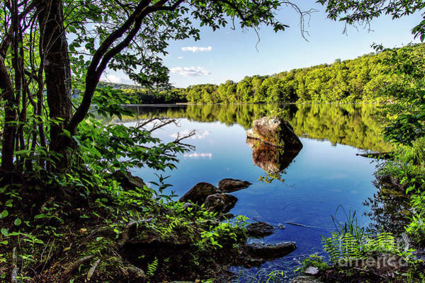 New Preston Ct Photograph - Fuller Pond by Grant Dupill