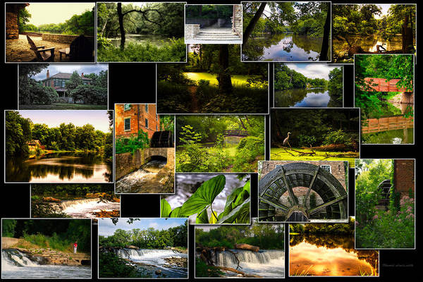 Wall Art - Photograph - Fullersburg Woods Salt Creek Dupage County Collage by Thomas Woolworth