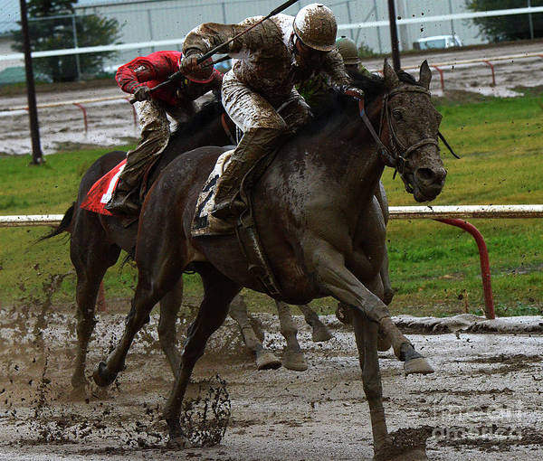 Lethbridge Photograph - Fun In The Mud 9 by Bob Christopher