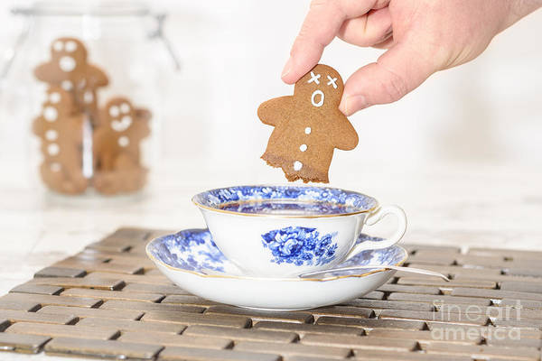Saucer Photograph - Funny Gingerbread by Amanda Elwell