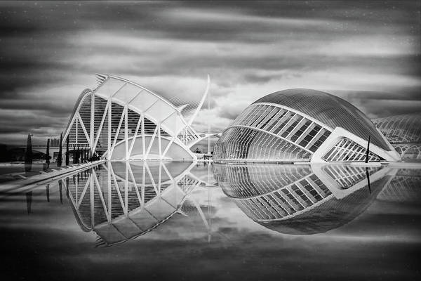 Arte Photograph - Futuristic Architecture Of Modern Valencia Spain In Black And Wh by Carol Japp