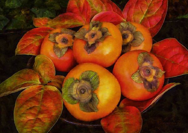 Photograph - Fuyu Persimmons by Brian Tada