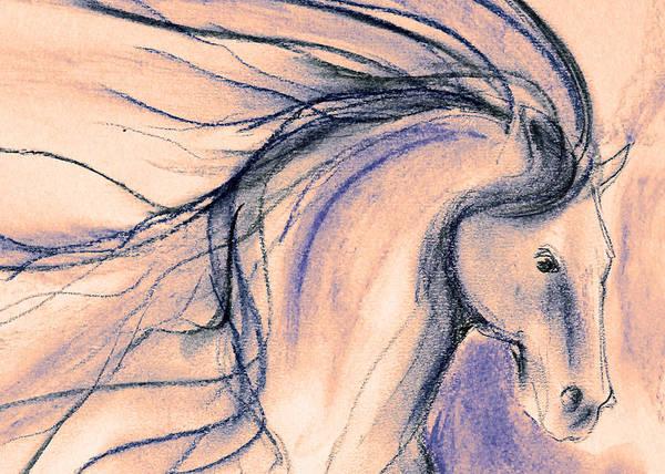 Warmbloods Drawing - Fuzzy by Jennifer Fosgate