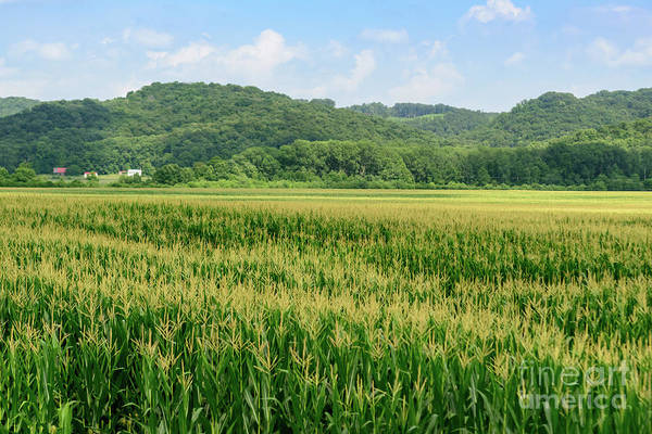 Photograph - Fx94a-102 Vinton County Farm Field by Ohio Stock Photography
