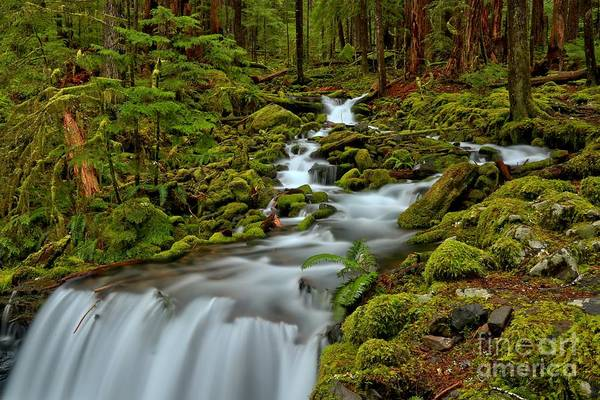 Photograph - Streaming To The Edge by Adam Jewell