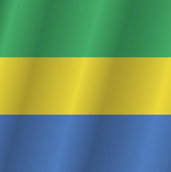 Gabonese Digital Art - Gabon Flag by Artpics