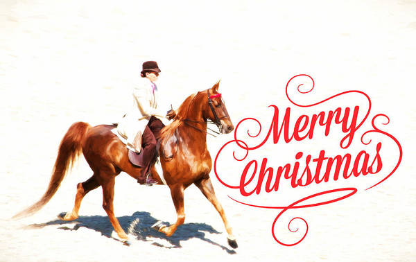 Photograph - Gaited Merry Christmas by Alice Gipson