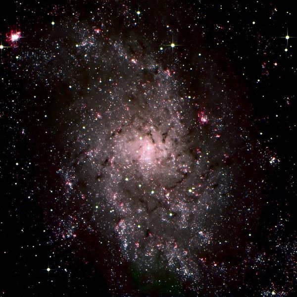 Photograph - Galaxy In Traiangulum by Jim DeLillo