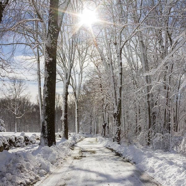 Photograph - Gales Ferry Winter Wonderland by Kirkodd Photography Of New England