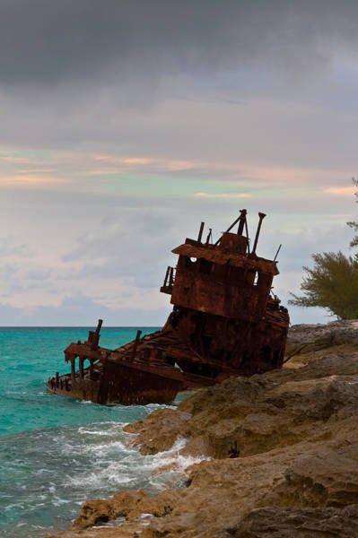 Photograph - Gallant Lady Aground by Ed Gleichman