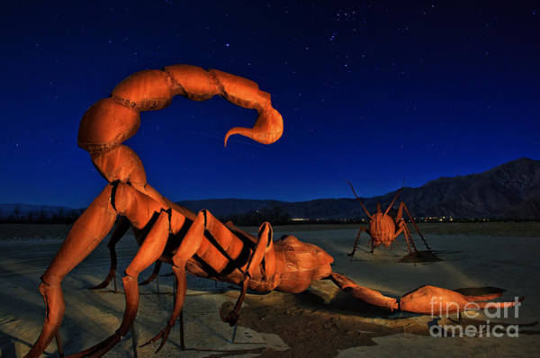 Photograph - Galleta Meadows Estate Sculptures Borrego Springs by Sam Antonio