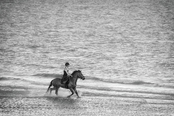 Wall Art - Photograph - Gallop by Martin Newman