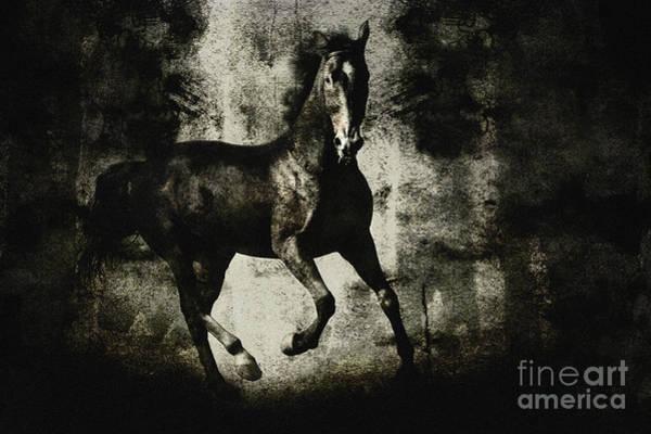 Digital Art - Galloping Horse Artwork by Dimitar Hristov