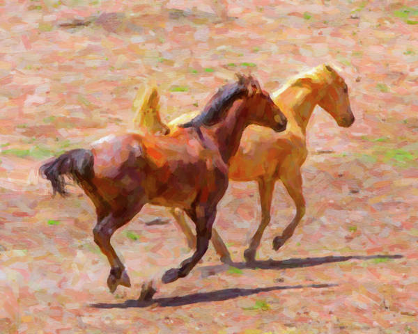 Digital Art - Galloping Horses by SR Green