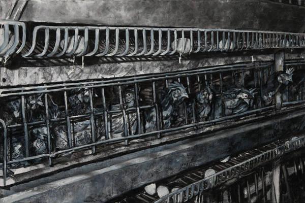 Wa Drawing - Gallus Gallus Domesticus by Ryan Babcock