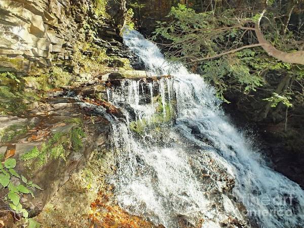 Sullivan County Photograph - Ganoga Falls 5 - Ricketts Glen by Cindy Treger