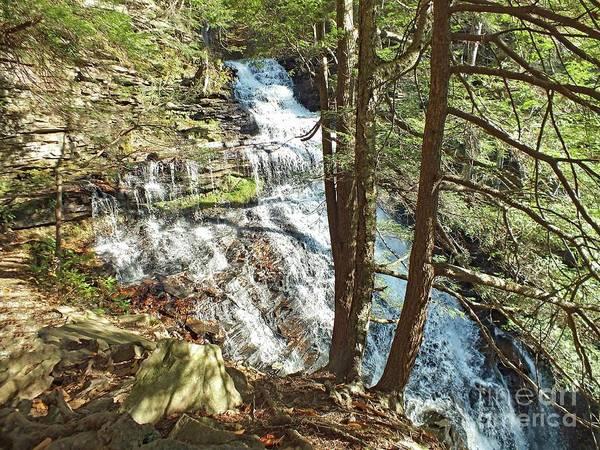 Sullivan County Photograph - Ganoga Falls - Ricketts Glen by Cindy Treger