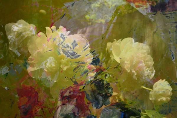 Photograph - Garden Abstract by Michelle Calkins