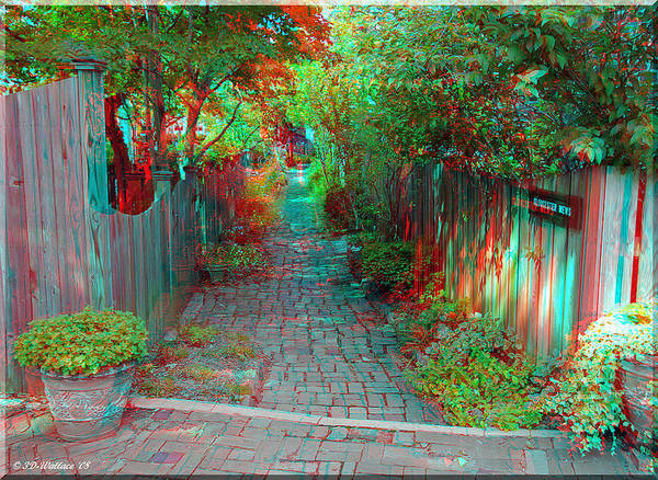 Anaglyph Photograph - Garden Alley - Use Red-cyan 3d Glasses by Brian Wallace